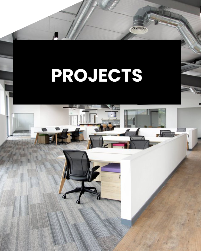 SHELBY PROJECTS LATEST